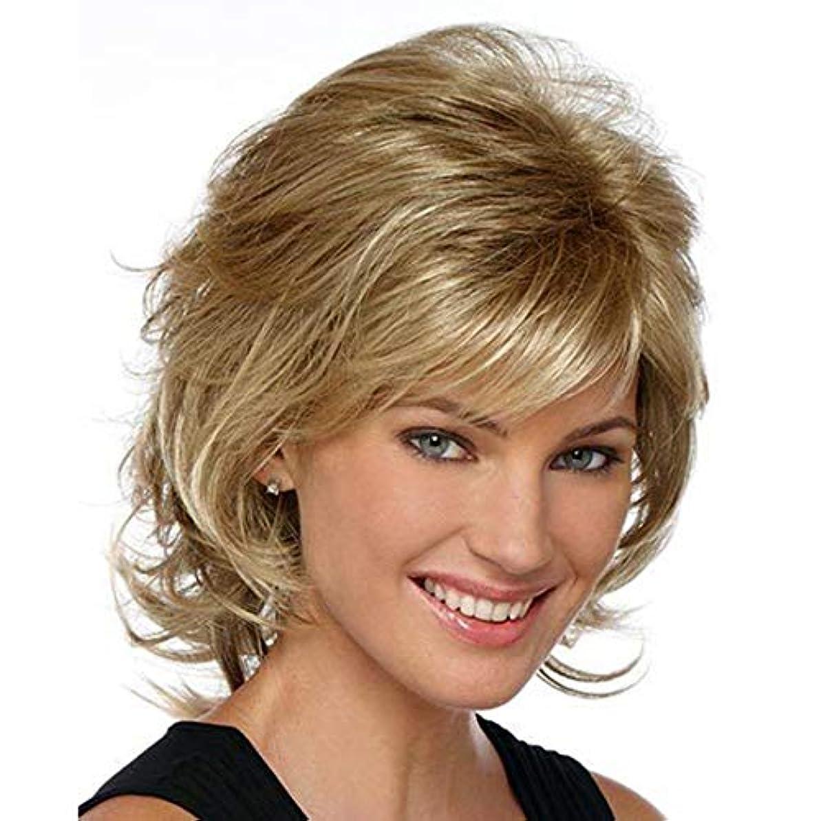 履歴書消費する合理的YOUQIU 女性の耐熱ウィッグナチュラルヘアのかつらのためのブラウン12