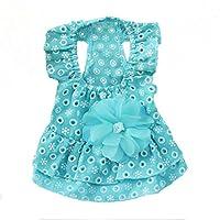 QLMS 新しい犬の服レースプリンセスドレスペット服春の小さな犬の夏の薄い子犬服 (色 : 青, サイズ さいず : S s)