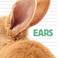 Ears (Question & Animal)