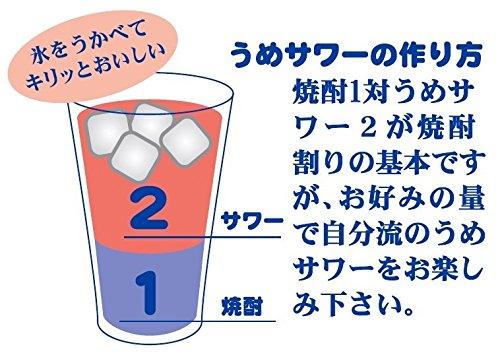 焼酎割用サワー 梅サワー ペット1l