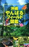 沖縄やんばるフィールド図鑑 画像