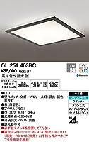 ODELIC(オーデリック) LED和風シーリングライト 調光・調色タイプ LC-FREE Bluetooth対応 【適用畳数:~6畳】 OL251403BC