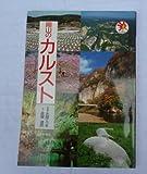 岡山のカルスト (山陽サンブックス)