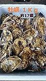 牡蠣(殻付かき)約1Kg 福岡産