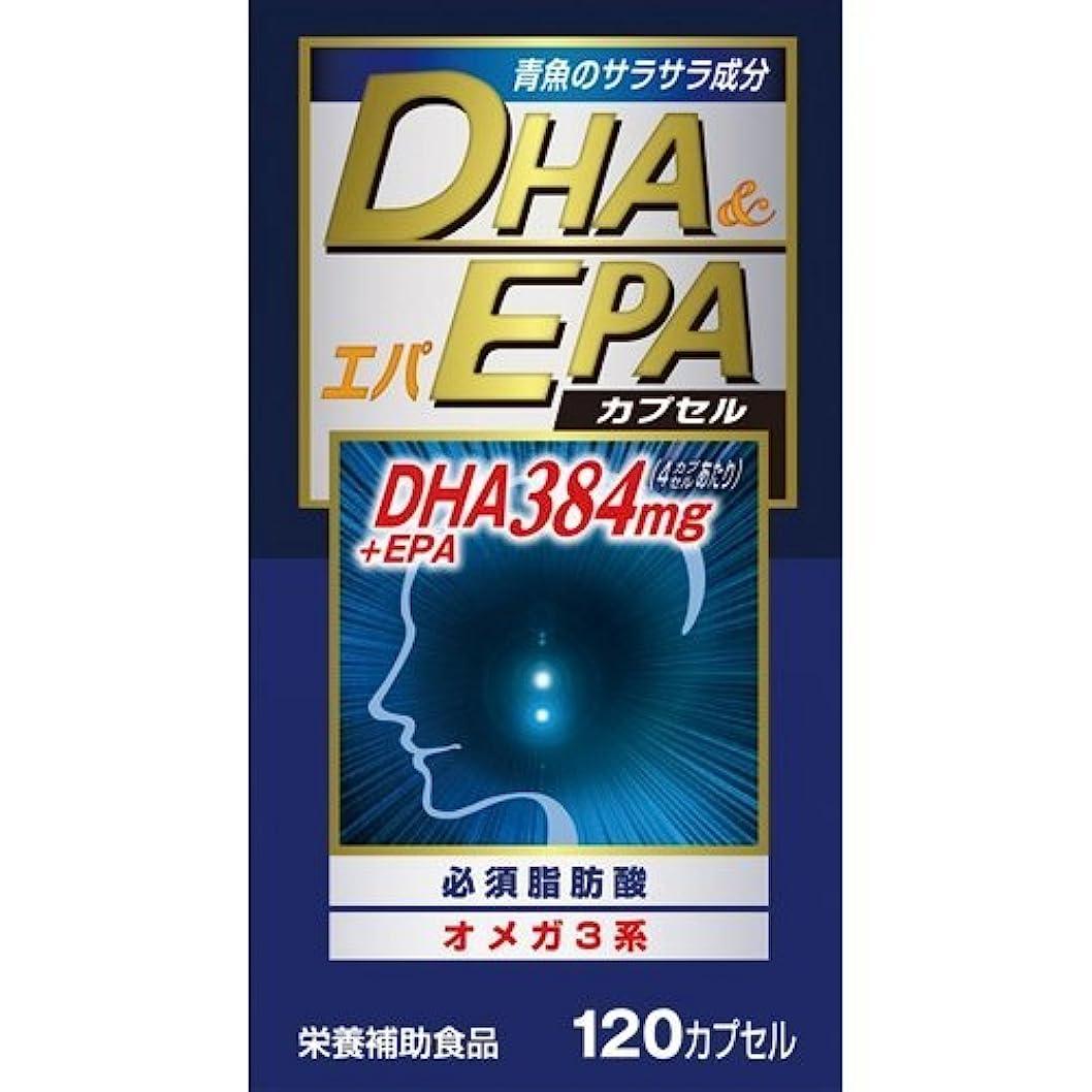 沈黙メンターチケット【ウエルネスジャパン】DHAエパ 120カプセル ×20個セット