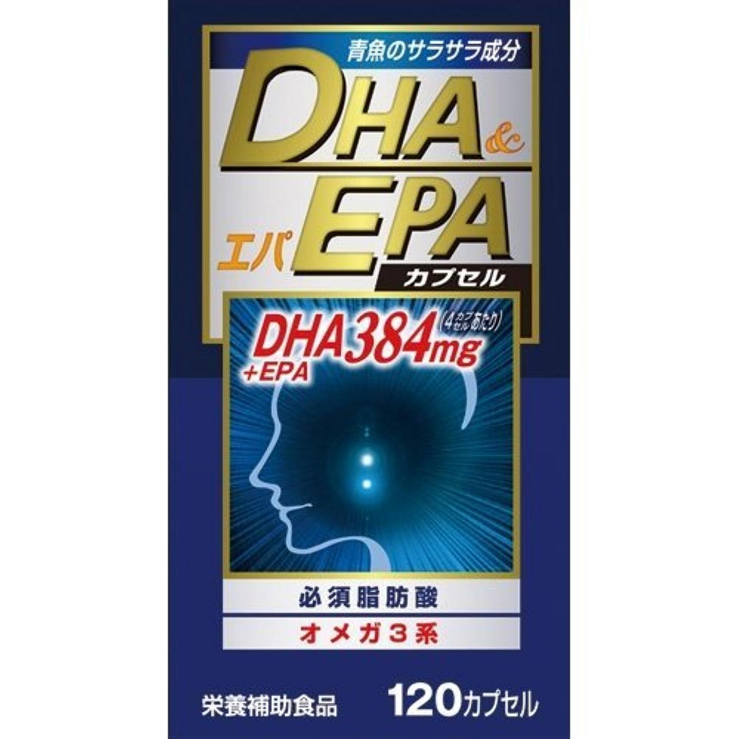 社員通りカウントアップ【ウエルネスジャパン】DHAエパ 120カプセル ×10個セット