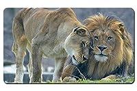 動物の愛、ライオンと雌ライオン パターンカスタムの マウスパッド 動物 デスクマット 大 (60cmx35cm)