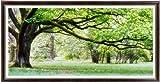 これ素敵っ クロスステッチ 刺繍キット 大樹 L309