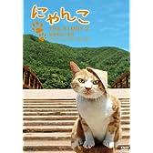 にゃんこTHE STORY 2 宿場町ねこ散歩 奈良井宿・福島宿編 [DVD]