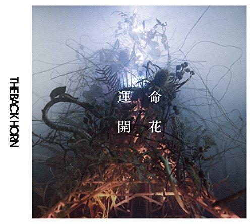 [画像:運命開花【初回限定盤】(CD+DVD)]