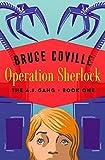 Operation Sherlock (The A.I. Gang Book 1) (English Edition)