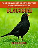 Blackbird: Fun and Fascinating Facts and Photos About These Amazing & Unique Animals for Kids