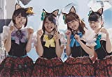 AKB48公式生写真 ニャーKB 【宮脇咲良、木崎ゆりあ、加藤玲奈、小嶋真子】