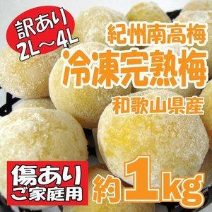 訳あり 紀州南高梅 冷凍梅(追熟) 約1kg (大玉2L~4L)