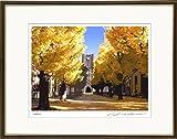 東京大学風景 限定オリジナル版画 版画額装 48x40cm