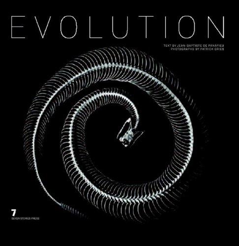 Evolutionの詳細を見る