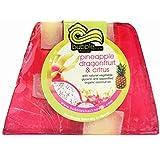 ハワイ お土産 ハワイアン雑貨 バブルシャック パイナップル チャンクソープ 石鹸 (ドラゴンフルーツ) ハワイ雑貨