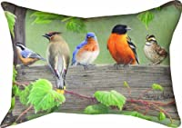 Manual Woodworkers and Weavers SHXBL3 Birds On A Line III Climaweave Pillow Digitally Printed 18 X 13 in.