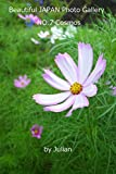 Beautiful JAPAN Photo Gallery NO.7 Cosmos 「コスモス写真集」