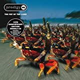 Fat of the Land (Expanded Edition) 画像