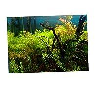 B Baosity 水族館バックグラウンド 背景ポスター 魚のタンク 壁紙ステッカー 全5色 - S