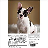 犬服工房 振袖着物(一重) ecoタイプ 小さなフレンチブルドッグ FXXXS&FXXS&FXS