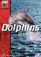 Dolphins in the Wild [DVD] [Import]
