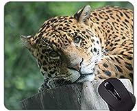 注文の元のヒョウシリーズマウスパッド、ステッチの端が付いているヒョウのヒョウのマウスパッド