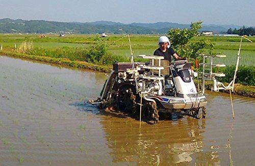 宮城県産 有機JAS玄米 ササニシキ 3kg 平成28年産 天日乾燥米
