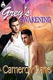 Grey's Awakening (English Edition)