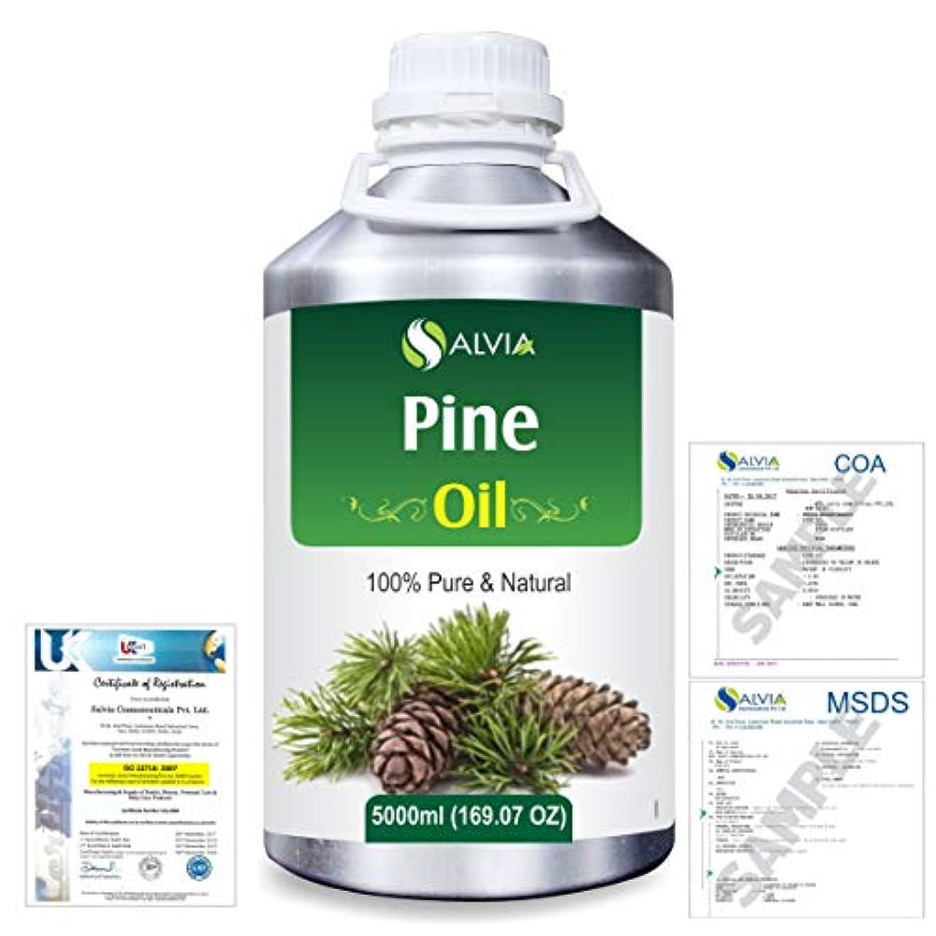 明るい背景衝突するPine (Pinus Sylvestris) 100% Natural Pure Essential Oil 5000ml/169fl.oz.