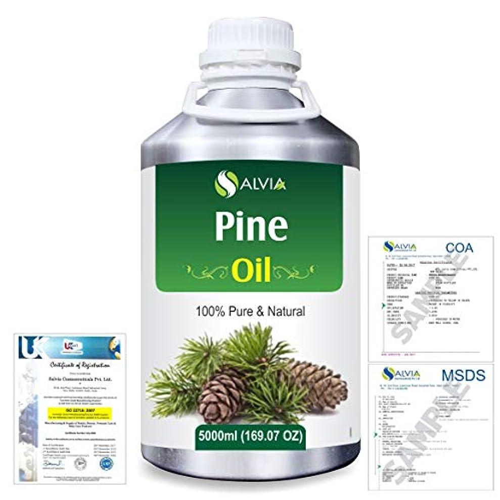 細断再発する降臨Pine (Pinus Sylvestris) 100% Natural Pure Essential Oil 5000ml/169fl.oz.