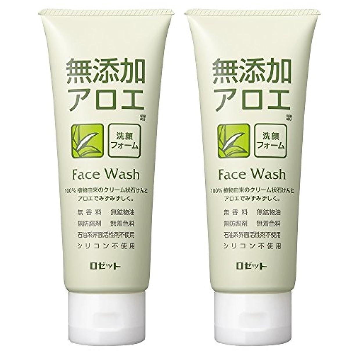 付き添い人差し引くパッチロゼット 無添加アロエ 洗顔フォーム 140g×2個パック AZ