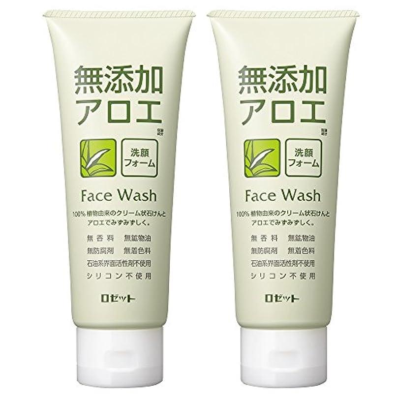 メロディアス瞬時にピストルロゼット 無添加アロエ 洗顔フォーム 140g×2個パック AZ