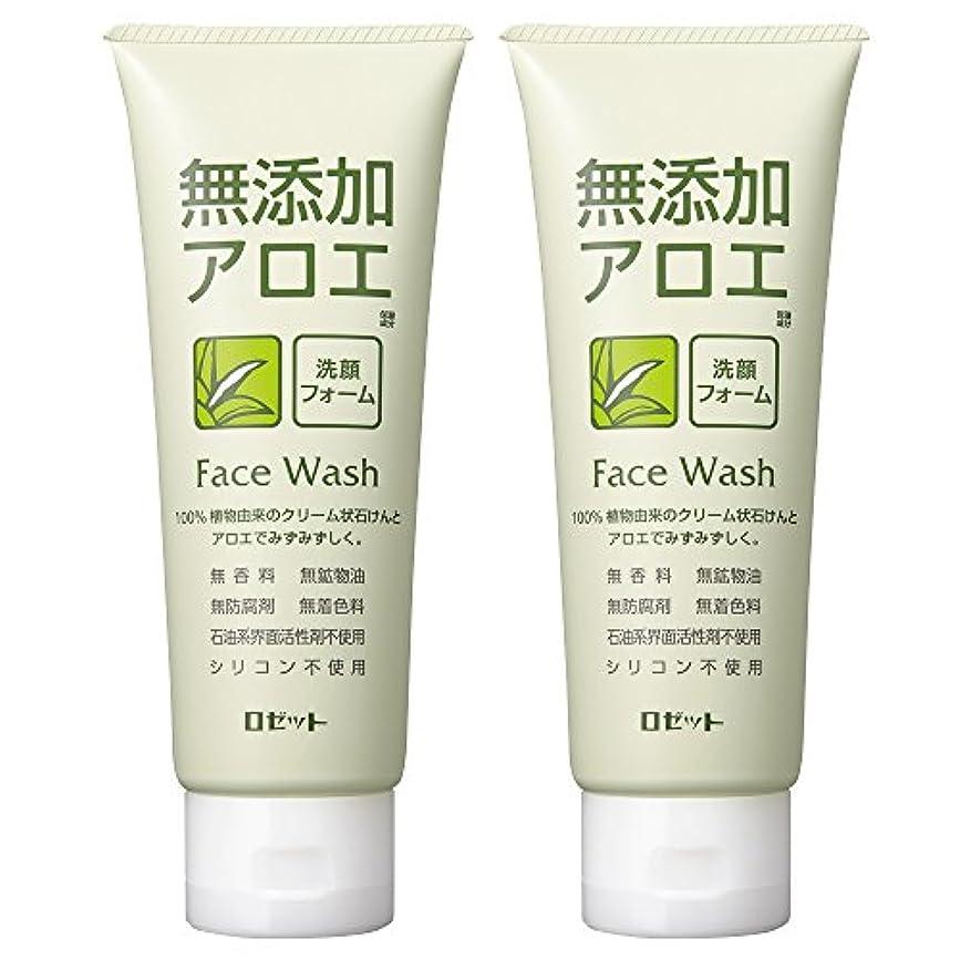 懲らしめコンパイル側溝ロゼット 無添加アロエ 洗顔フォーム 140g×2個パック AZ