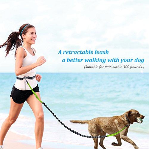 LOBKIN 犬用伸縮リード 反射光付きベルト 耐震性拡張 調節可能なウエスト ベルト ウォーキング ・ トレーニング対応 小型犬 中型犬 大型犬 50キログラムまで対応 (緑)