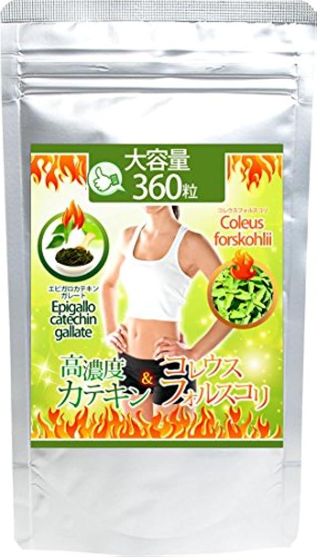 病な複雑でない味わう高濃度カテキン&コレウスフォルスコリ 360粒 約6か月分