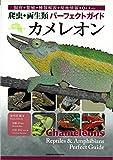 カメレオン (爬虫・両生類パーフェクトガイド)