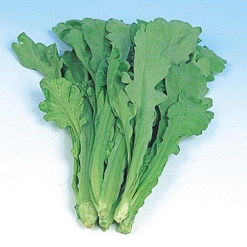 【メール便配送】国華園 野菜たね 健康野菜 大葉春菊 1袋(30ml)【※発送が国華園からの場合のみ正規品です】