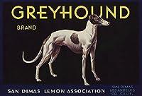 Greyhoundブランド–San Dimas、カリフォルニア–Citrusクレートラベル 9 x 12 Art Print LANT-57471-9x12