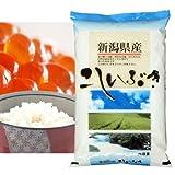 【精米】新潟県産 白米 北陸 越後の米 こしいぶき 10kgx2袋 平成28年産 新米