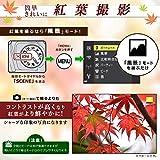 Nikon デジタルカメラ COOLPIX P900  ブラック  クールピクス P900BK 画像