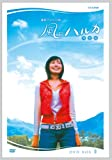 連続テレビ小説  風のハルカ  完全版 BOX II [DVD]