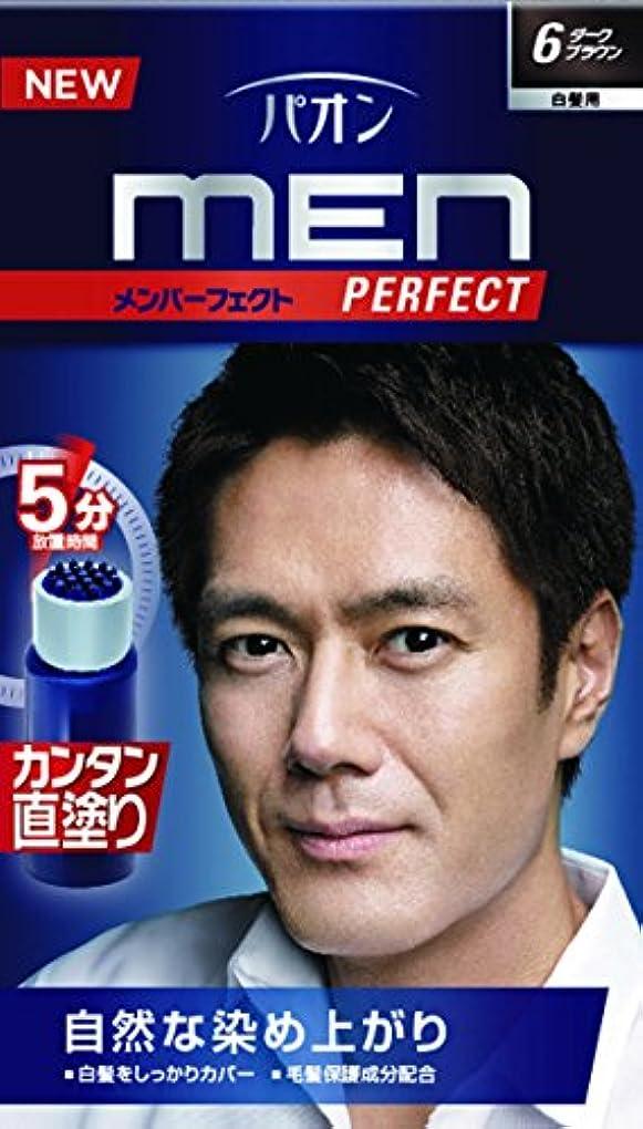 韻フライカイト触覚パオン メンパーフェクト 6 ダークブラウン 40g+40mL (医薬部外品)