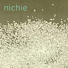 nichie 無水 クエン酸 920g