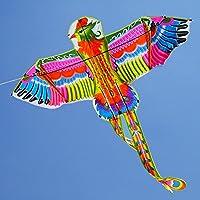 71インチ/ 1.8 M SignleラインEagle Kite Rainbow Dragon Kite With Flyingツールアウトドアスポーツトイ子供&大人
