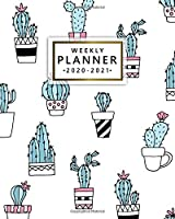 Weekly Planner 2020-2021: Nifty 2 Year Weekly & Daily View Organizer with To-Do's, Funny Holidays & Inspirational Quotes, Vision Boards & Notes   Two Year Agenda & Diary   Funky Potted Cactus & Succulents