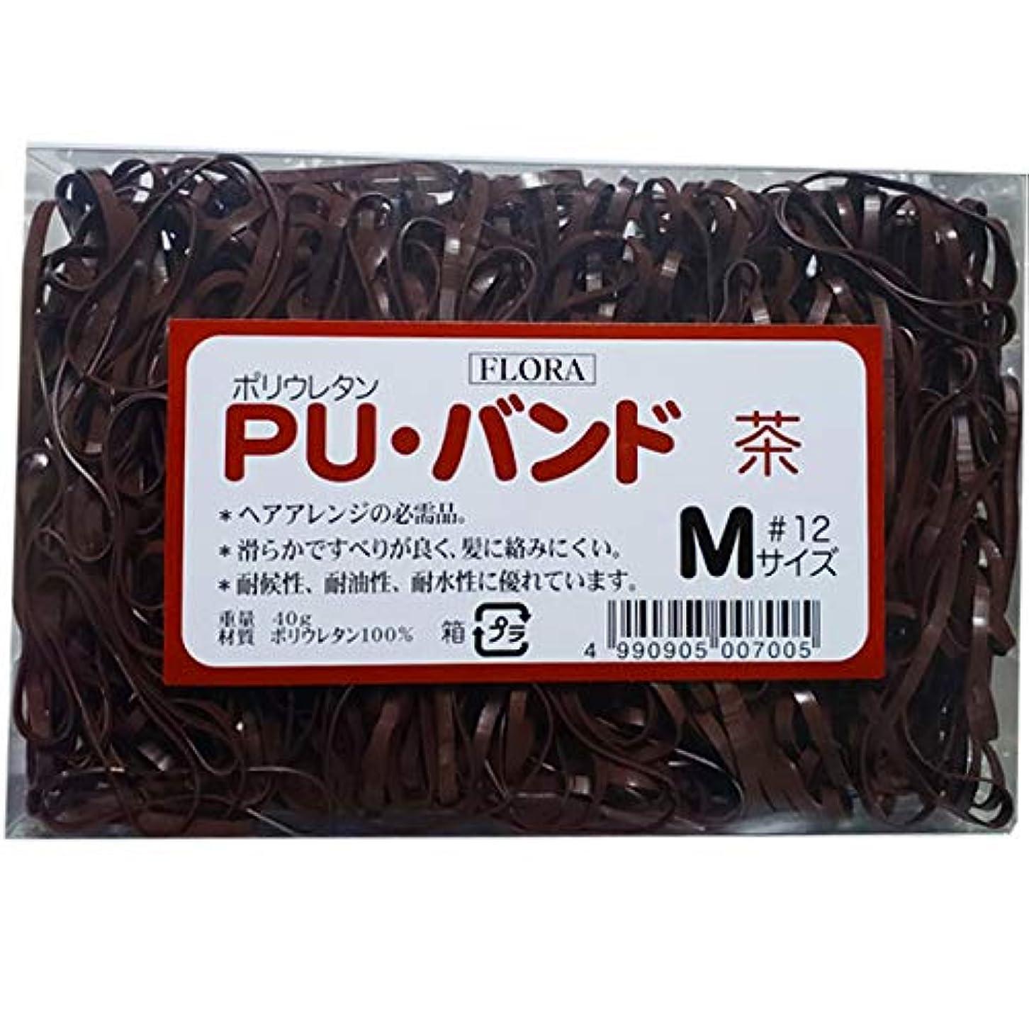 驚き美的ずらすローレル フローラ PU バンド 内容量40g #12 (茶)