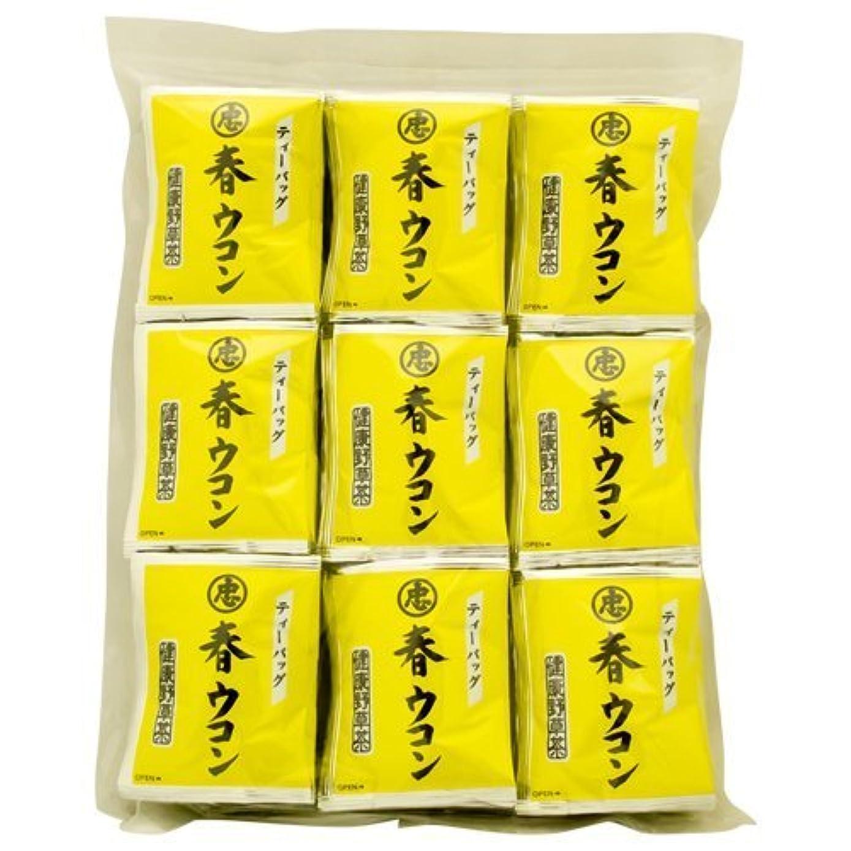 城フィードオン作曲家長寿沖縄 春ウコン茶 ティーバッグ 2g×100P