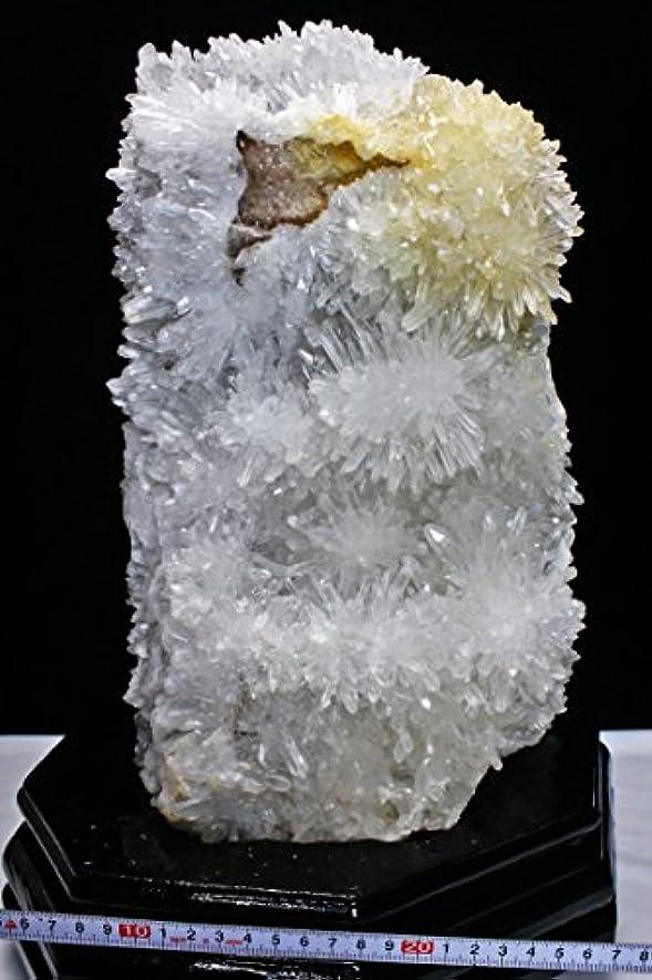 キャラバンクリップ蝶献身23.7Kg ヒマラヤ水晶クラスター【T768-651】